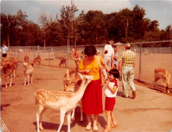 July 1980: Toronto